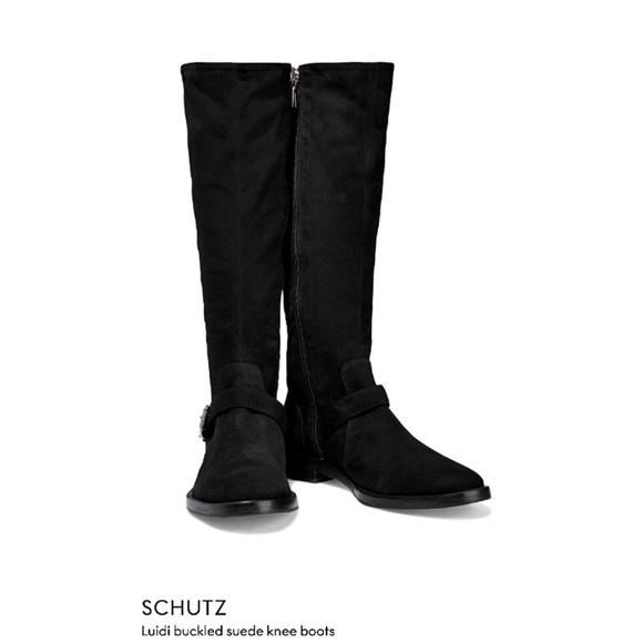 Schultz | 'Luidi' Suede Tall Boot